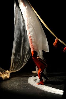 Theatre of the Viscera installation performance